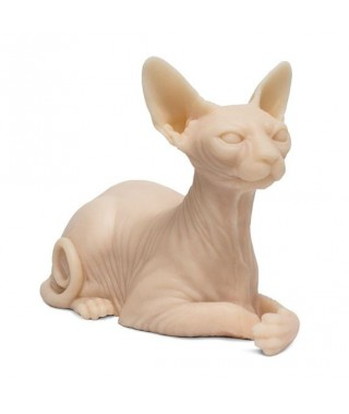 Silicone cat to exercise SPHINX