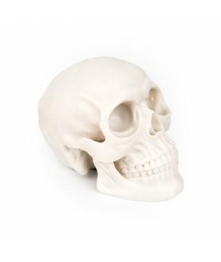 Silikonowa czaszka do ćwiczeń - Silicone skull