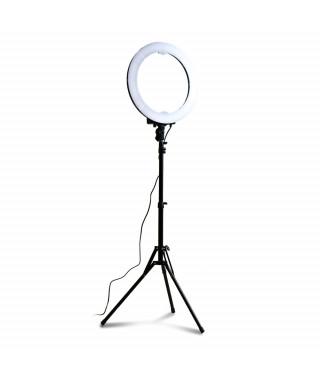 Lampa RING200+statyw - śr. 50cm z reg. mocy