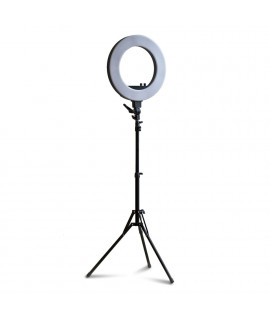 Led lamp RING200 dia. 46cm + tripod - with adjustable color temperature and power