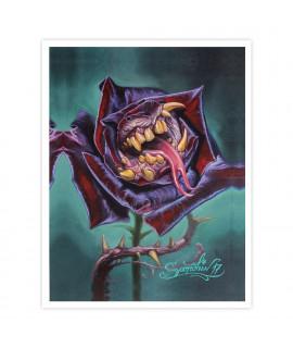 Dmitriy Samohin Print no. 1 - Rose